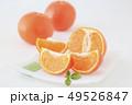 オレンジ サンクイン フルーツの写真 49526847