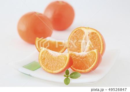 オレンジ サンクイン 49526847