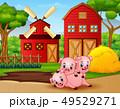 農場 ブタ 農業のイラスト 49529271