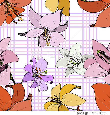Vector Lily Floral botanical flower. Black and white engraved ink art. Seamless background pattern. 49531778