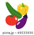 夏野菜 野菜 白バックのイラスト 49533930