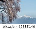 わに塚の桜 桜 八ヶ岳の写真 49535140