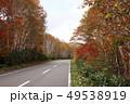 10月 紅葉の八幡平アスピーテライン 49538919