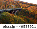 10月 城ヶ倉大橋-紅葉の八甲田- 49538921