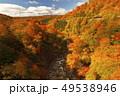 10月 新玉川温泉界隈から展望した紅葉風景 49538946