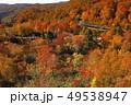 10月 新玉川温泉界隈から展望した紅葉風景 49538947