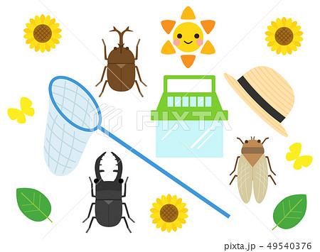 夏 昆虫 セット 49540376