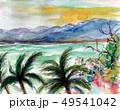 石垣島 49541042