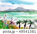 沖縄 49541381