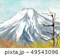 杓子山より望む富士山 49543096