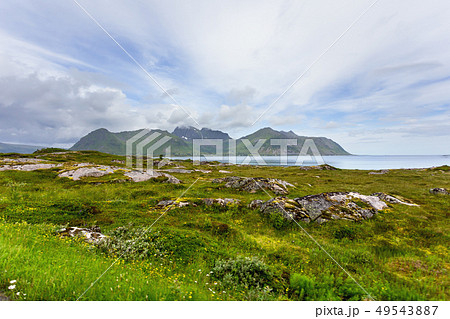 Beautiful scandinavian landscape, Norway. 49543887