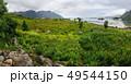 Lofoten islands landscape, Norway. 49544150
