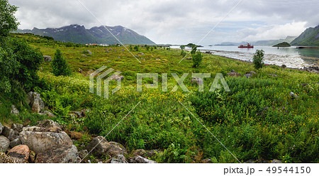 Lofoten islands landscape, Norway. 49544150
