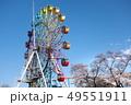 桜の栃木県総合運動公園 49551911