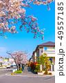 電柱のない街と桜 49557185