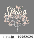 Hello spring card with Cherry Blossom Spring Flower tree 49562029