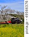 千葉県、春の小湊鉄道飯給駅 49566376