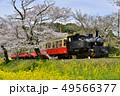 千葉県、春の小湊鉄道飯給駅 49566377
