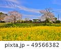 千葉県、春の小湊鉄道飯給駅 49566382