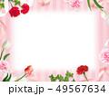 背景-カーネーション-母の日-ピンクーストライプ-フレーム 49567634
