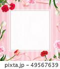 背景-カーネーション-母の日-ピンクーストライプ-フレーム 49567639