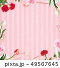 背景-カーネーション-母の日-ピンクーストライプ-フレーム 49567645