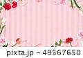 背景-カーネーション-母の日-ピンクーストライプ-フレーム 49567650