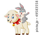 Cartoon cute bunny riding a lamb 49583558