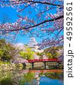 春爛漫の姫路城 49592561