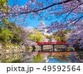 春爛漫の姫路城 49592564