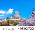 春爛漫の姫路城 49592722