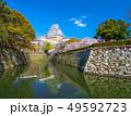 春爛漫の姫路城 49592723