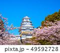春爛漫の姫路城 49592728