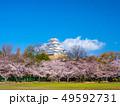 春爛漫の姫路城 49592731