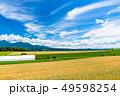 空 晴れ 畑の写真 49598254