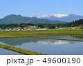 春の蔵王連峰と水田 49600190