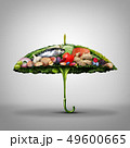 Healthy Food Disease Prevention 49600665