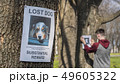 Teenager pasting posters of the missing dogs 49605322