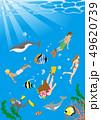 ダイビングを楽しむ人々と南国の海の生き物たち、海中風景 - コピースペースあり 49620739