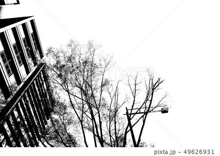 スクリーントーン 自然風景 モノクロ 49626931