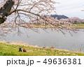 一目千本桜 桜並木 シニア 49636381