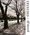 桜の芳賀工業団地周辺道路 49639383