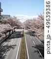 桜の芳賀工業団地周辺道路 49639386