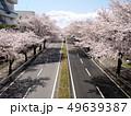 桜の芳賀工業団地周辺道路 49639387