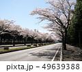 桜の芳賀工業団地周辺道路 49639388