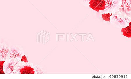 背景-バラ-カーネーション-ピンク-母の日 49639915