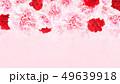 背景-バラ-カーネーション-ピンク-母の日 49639918