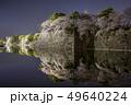 愛知県 名古屋城桜 夜景 49640224