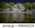 愛知県 名古屋城桜 夜景 49640228