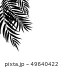 Beautifil Palm Tree Leaf  Silhouette Background Vector Illustration 49640422
